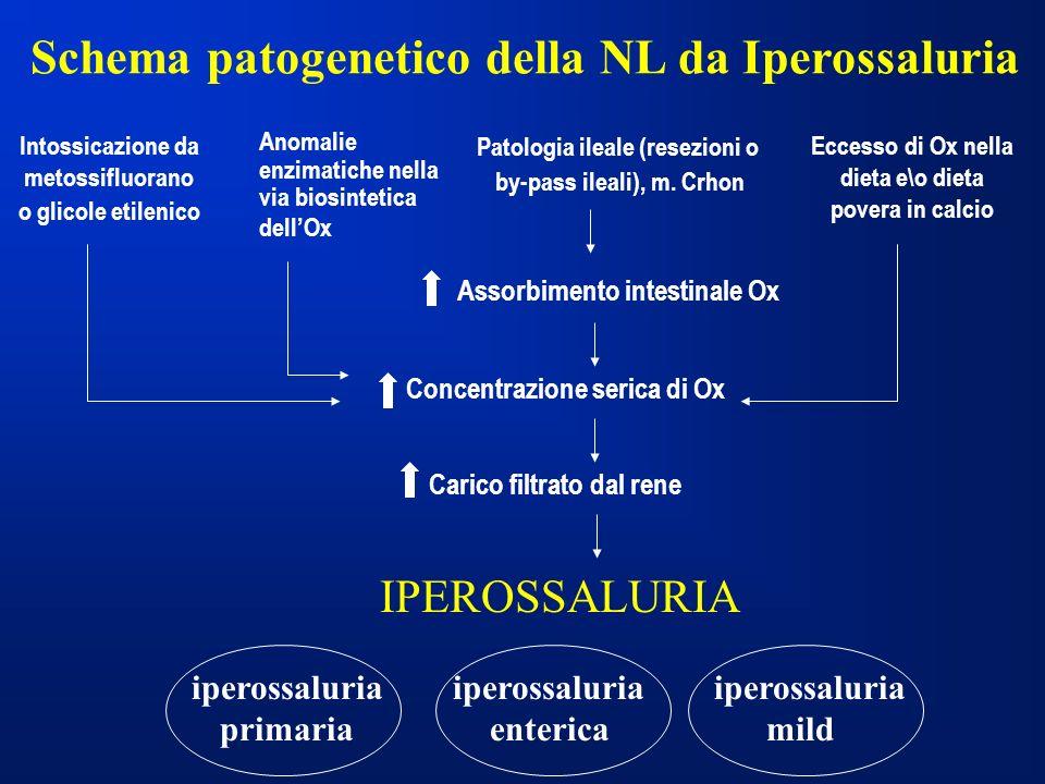 Intossicazione da metossifluorano o glicole etilenico Schema patogenetico della NL da Iperossaluria Anomalie enzimatiche nella via biosintetica dellOx Patologia ileale (resezioni o by-pass ileali), m.