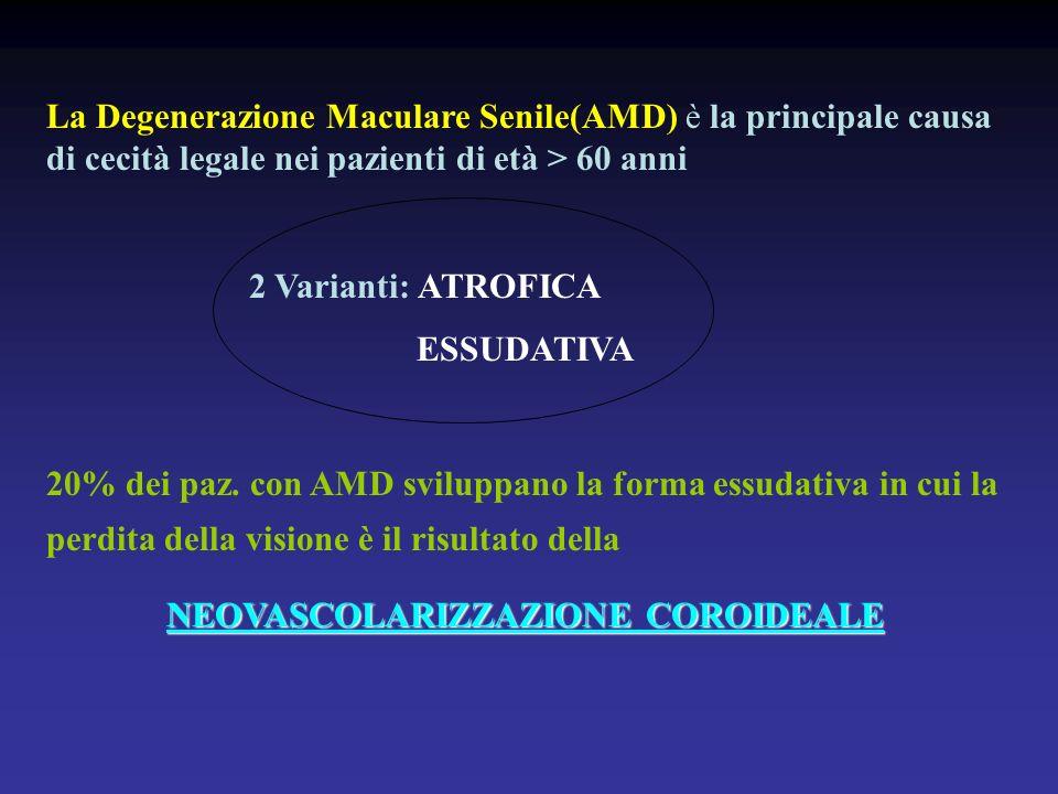 La Degenerazione Maculare Senile(AMD) è la principale causa di cecità legale nei pazienti di età > 60 anni 2 Varianti: ATROFICA ESSUDATIVA 20% dei paz