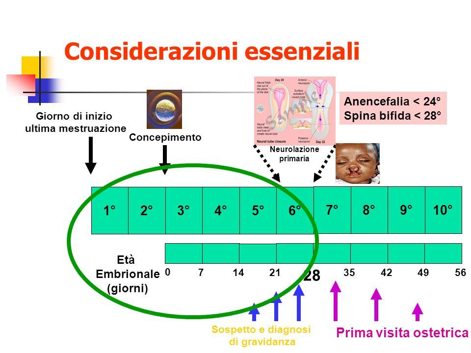 Considerazioni essenziali 3°4°5°6° 7°8°9°10° 1° Giorno di inizio ultima mestruazione Concepimento 2° Età Embrionale (giorni) 0 71421 28 35424956 Neuro