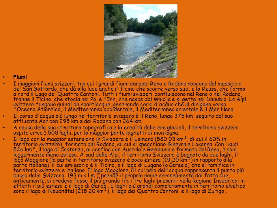 Fiumi I maggiori fiumi svizzeri, tra cui i grandi fiumi europei Reno e Rodano nascono dal massiccio del San Gottardo, che dà alla luce anche il Ticino