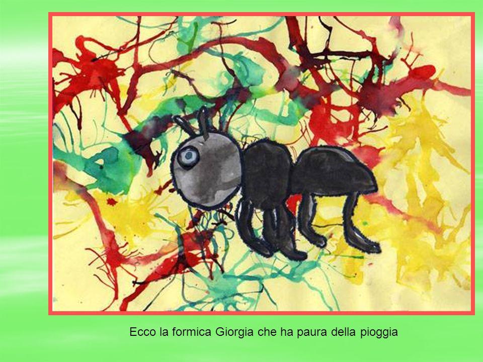 Ecco la formica Giorgia che ha paura della pioggia