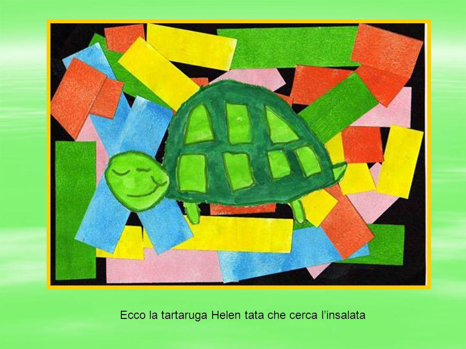 Ecco la tartaruga Helen tata che cerca linsalata