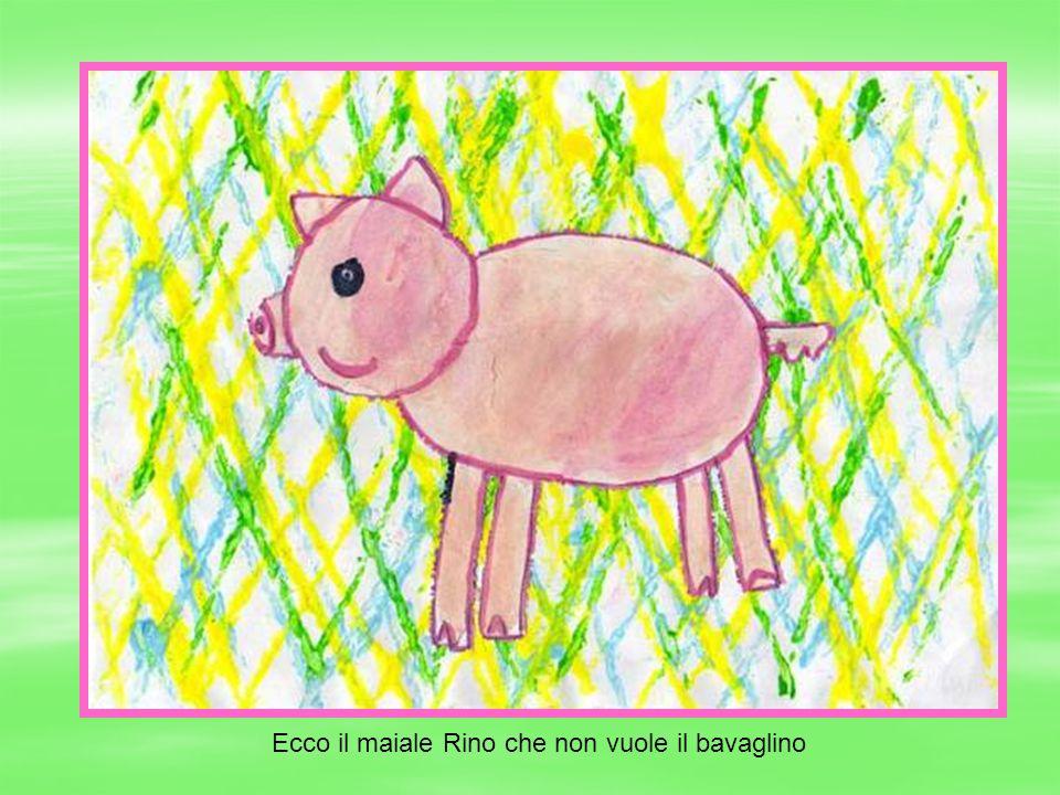 Ecco il maiale Rino che non vuole il bavaglino
