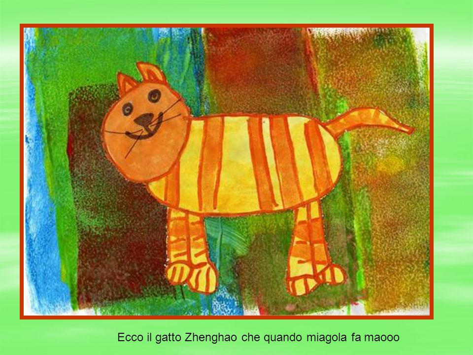 Ecco il gatto Zhenghao che quando miagola fa maooo