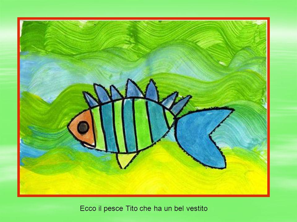 Ecco il pesce Tito che ha un bel vestito