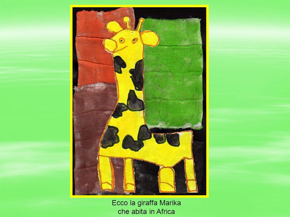 Ecco la giraffa Marika che abita in Africa