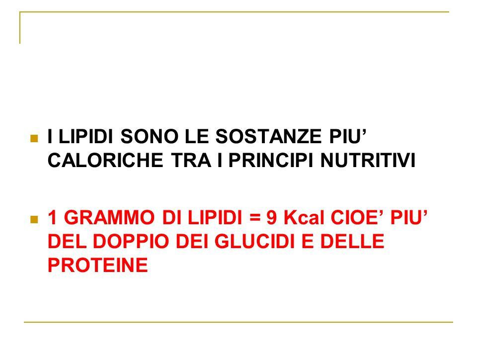 I LIPIDI SONO LE SOSTANZE PIU CALORICHE TRA I PRINCIPI NUTRITIVI 1 GRAMMO DI LIPIDI = 9 Kcal CIOE PIU DEL DOPPIO DEI GLUCIDI E DELLE PROTEINE