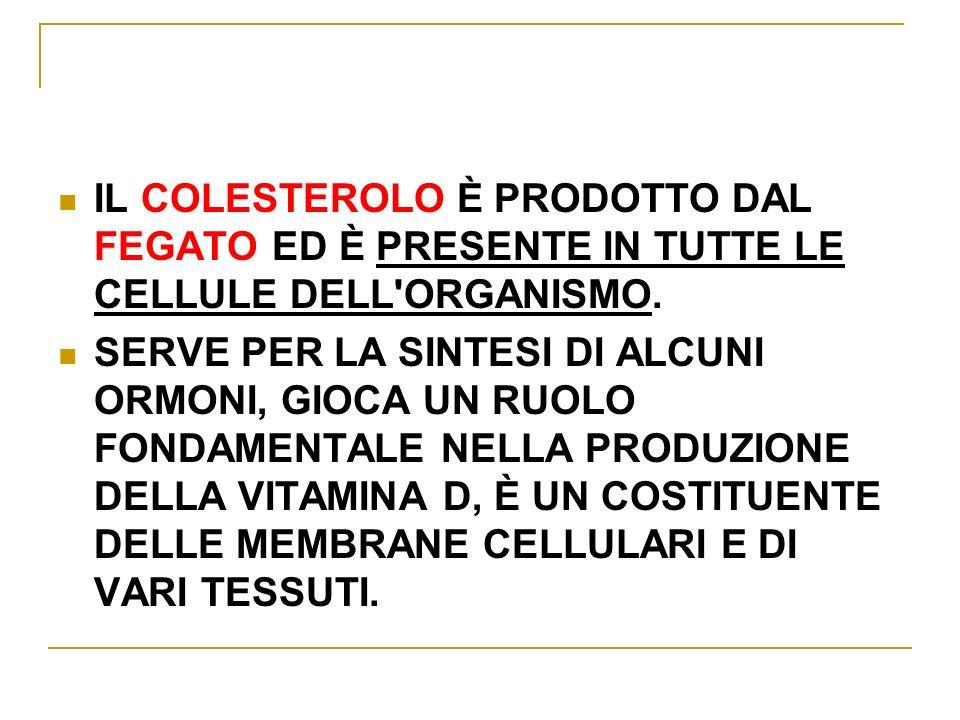 IL COLESTEROLO È PRODOTTO DAL FEGATO ED È PRESENTE IN TUTTE LE CELLULE DELL ORGANISMO.