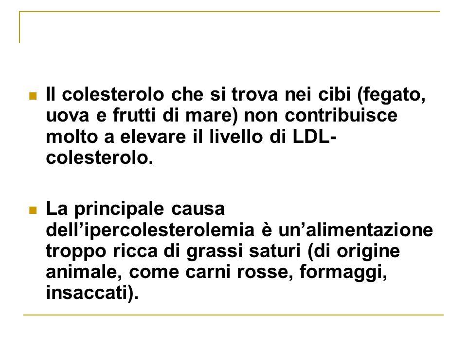 Il colesterolo che si trova nei cibi (fegato, uova e frutti di mare) non contribuisce molto a elevare il livello di LDL- colesterolo.
