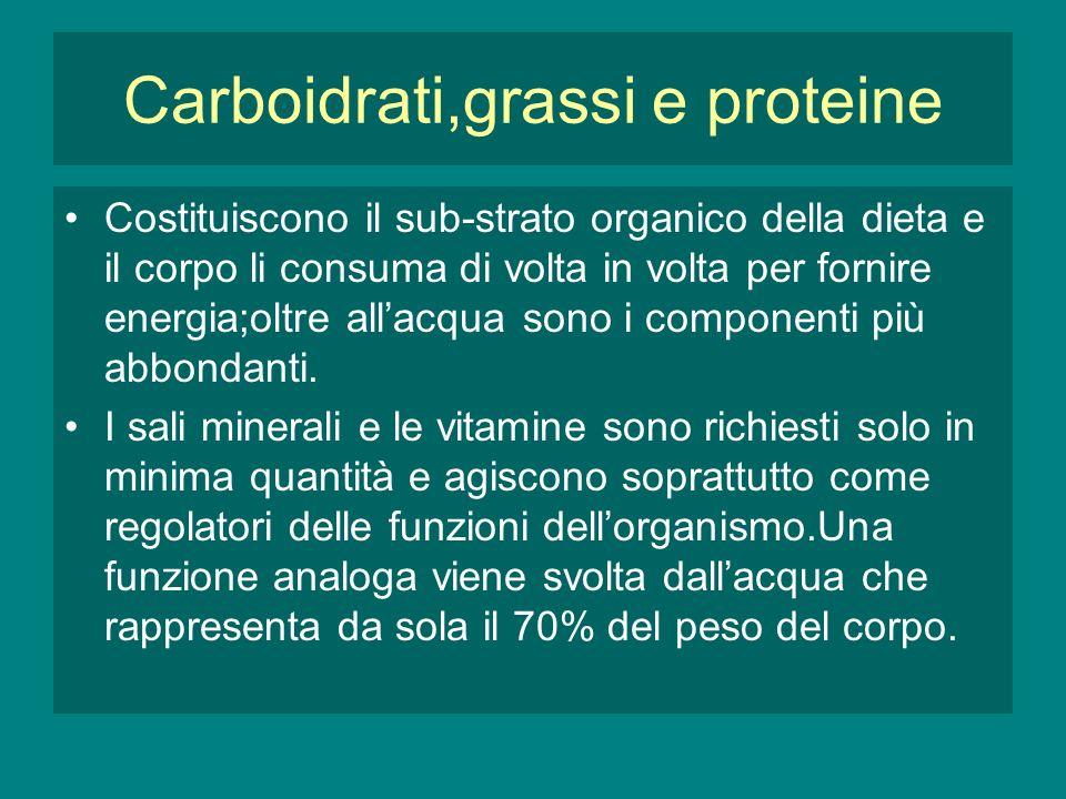 Carboidrati,grassi e proteine Costituiscono il sub-strato organico della dieta e il corpo li consuma di volta in volta per fornire energia;oltre allacqua sono i componenti più abbondanti.