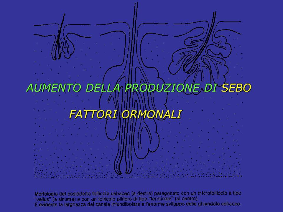AUMENTO DELLA PRODUZIONE DI SEBO FATTORI ORMONALI FATTORI ORMONALI