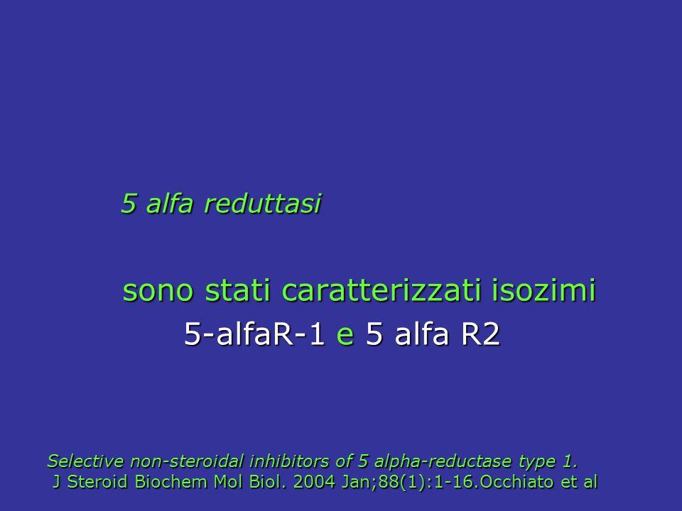 5 alfa reduttasi 5 alfa reduttasi sono stati caratterizzati isozimi sono stati caratterizzati isozimi 5-alfaR-1 e 5 alfa R2 5-alfaR-1 e 5 alfa R2 Sele