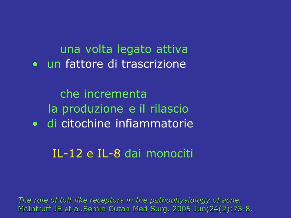 una volta legato attiva un fattore di trascrizione che incrementa la produzione e il rilascio di citochine infiammatorie IL-12 e IL-8 dai monociti The
