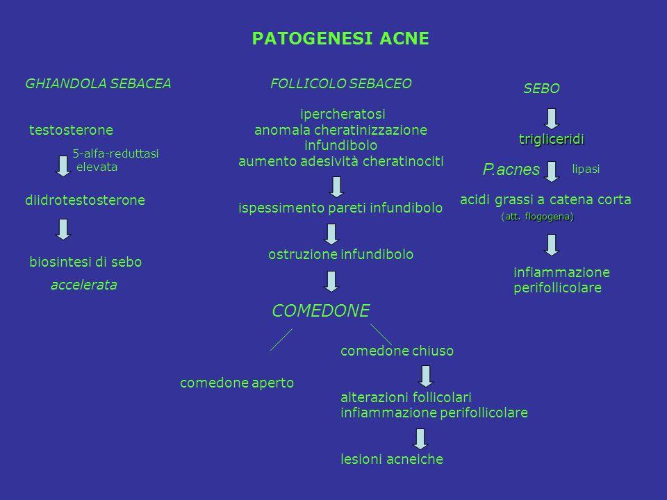 FOLLICOLO SEBACEO ipercheratosi anomala cheratinizzazione infundibolo aumento adesività cheratinociti ispessimento pareti infundibolo ostruzione infun