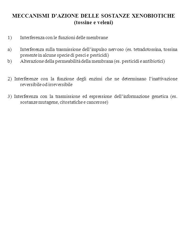 MECCANISMI DAZIONE DELLE SOSTANZE XENOBIOTICHE (tossine e veleni) 1)Interferenza con le funzioni delle membrane a)Interferenza sulla trasmissione dellimpulso nervoso (es.
