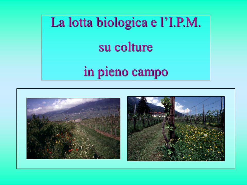 La lotta biologica e lI.P.M. su colture in pieno campo