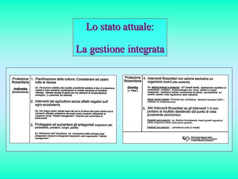 Lo stato attuale: La gestione integrata