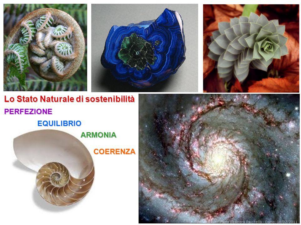 Lo Stato Naturale di sostenibilità PERFEZIONE ARMONIA COERENZA EQUILIBRIO Paola Eleonora Raschellà - Como, 10/02/2011