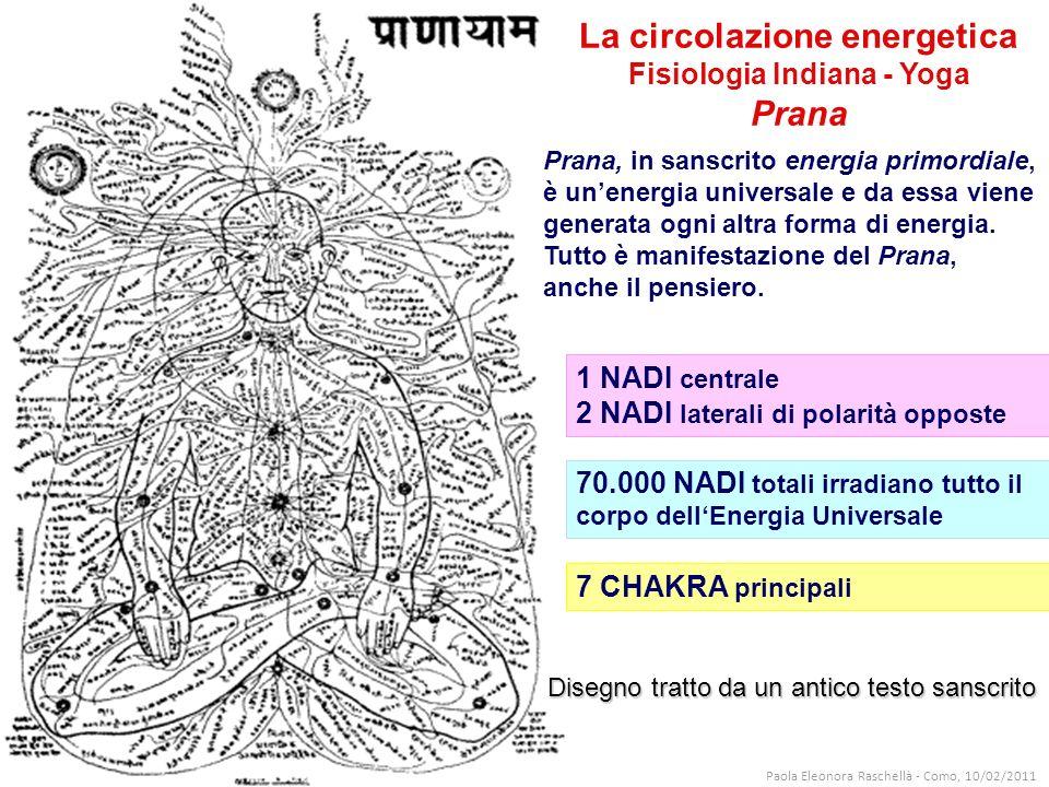 Disegno tratto da un antico testo sanscrito La circolazione energetica Fisiologia Indiana - Yoga Prana 7 CHAKRA principali 1 NADI centrale 2 NADI laterali di polarità opposte 70.000 NADI totali irradiano tutto il corpo dellEnergia Universale Prana, in sanscrito energia primordiale, è unenergia universale e da essa viene generata ogni altra forma di energia.