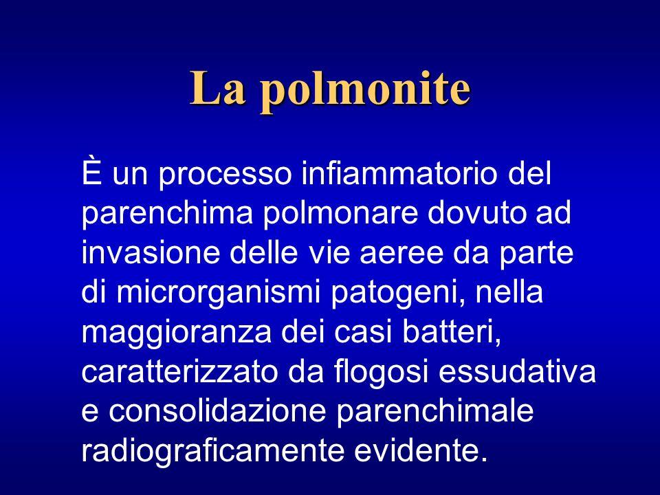 CAPCAP (Community-Acquired Pneumonia) HAPHAP (Hospital-Acqired Pneumonia) IAC VAP Ospedali, Case di riposo, RSA Strutture psichiatriche, Centri di riabilitazione Terapie intensive con ventilazione meccanica Classificazione importante per lorientamento sui agenti eziologici coinvolti, con riflessi sia sulla terapia che sulla prognosi La polmonite