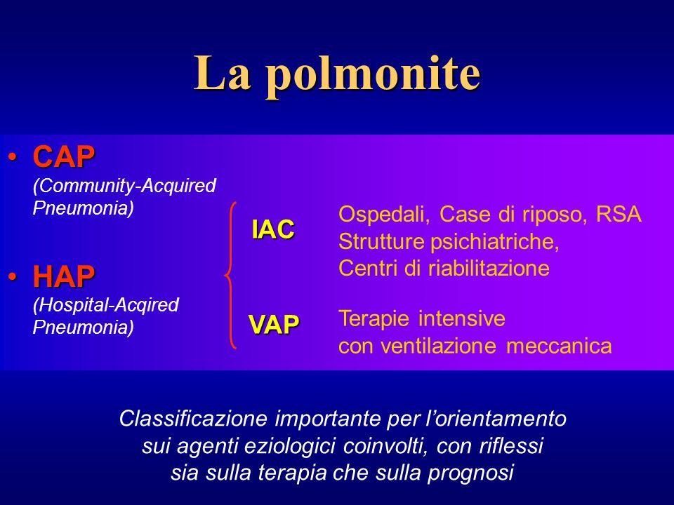 Eziologia Nonostante che i maggiori responsabili delle CAP siano lo streptococcus pneumoniae, lhaemofilus influenzae, la moraxella catarrhalis e la staphylococcus aureus, una precoce diagnosi eziologica il più delle volte non è ottenibile.