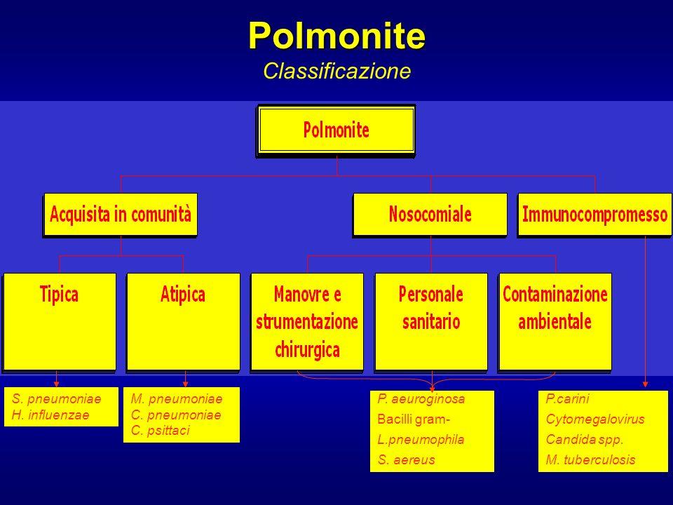 La polmonite comunitaria è causata da patogeni contratti al di fuori dellambiente ospedaliero.