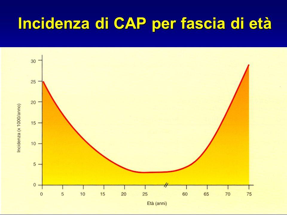 In vitro activity (MIC 90 and MBC 90 ) of six fluoroquinolones on 48 Italian isolates of M.