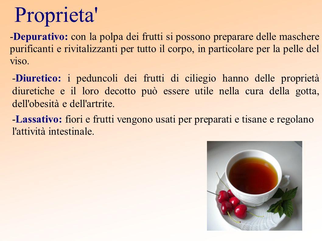 Proprieta' -Depurativo: con la polpa dei frutti si possono preparare delle maschere purificanti e rivitalizzanti per tutto il corpo, in particolare pe