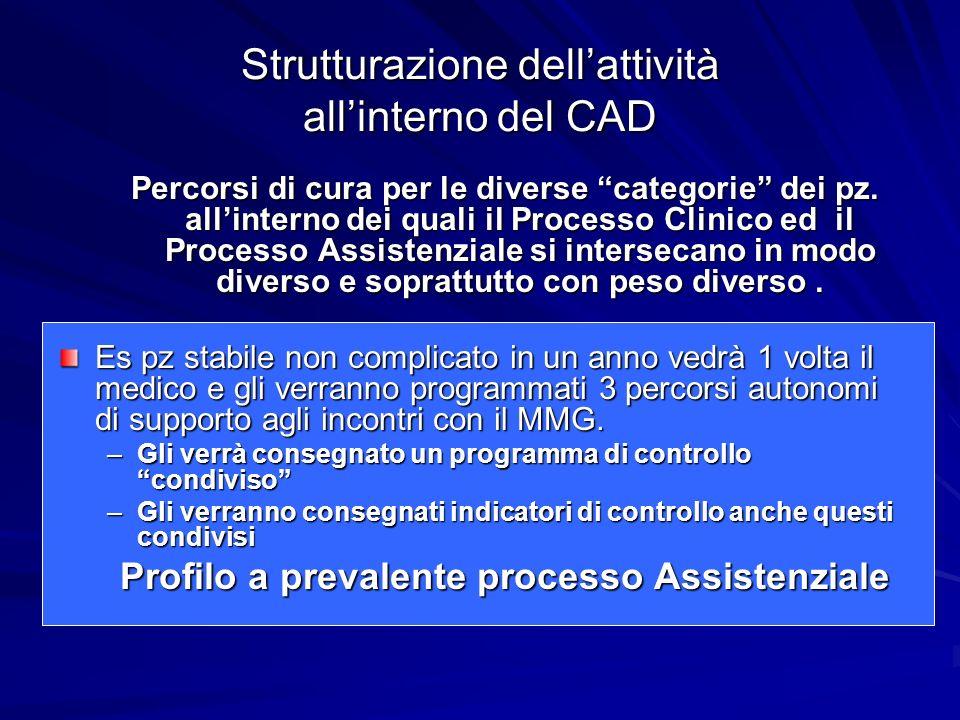 Strutturazione dellattività allinterno del CAD Percorsi di cura per le diverse categorie dei pz.