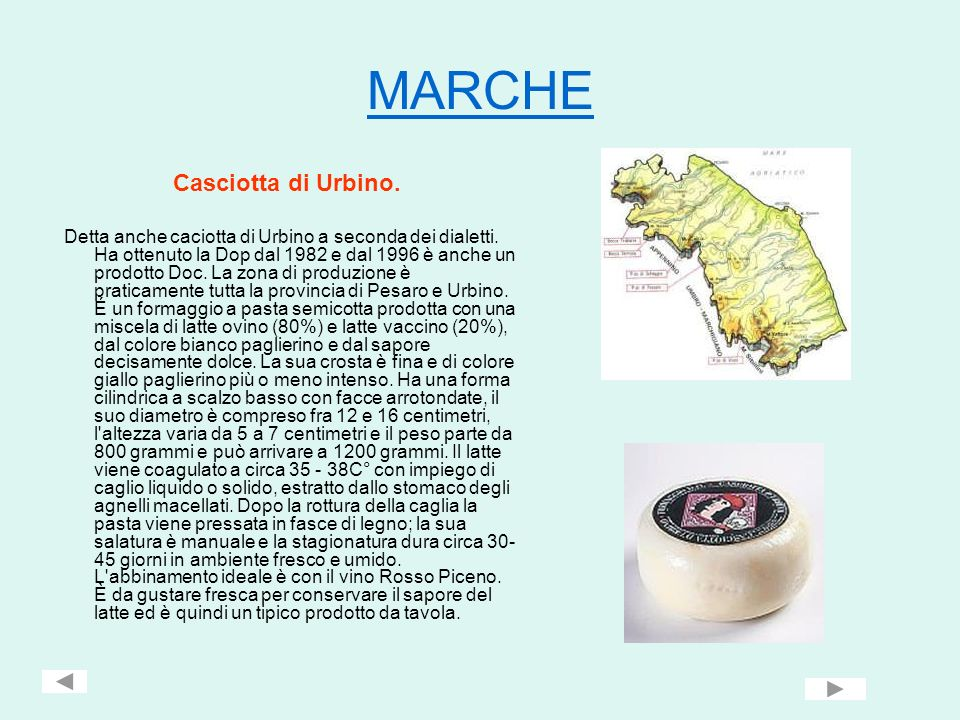 MARCHE Casciotta di Urbino. Detta anche caciotta di Urbino a seconda dei dialetti. Ha ottenuto la Dop dal 1982 e dal 1996 è anche un prodotto Doc. La