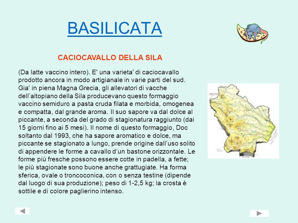 CALABRIA Canestrato calabro Prodotto con latte vaccino, ovino e caprino intero crudo, singolo o miscelati tra loro.