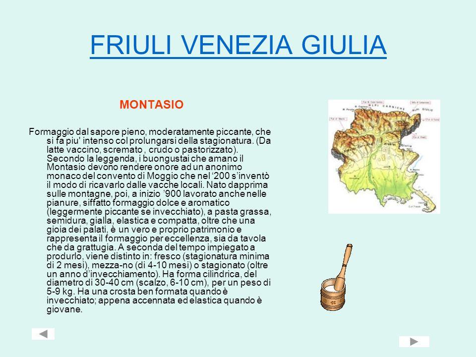 FRIULI VENEZIA GIULIA MONTASIO Formaggio dal sapore pieno, moderatamente piccante, che si fa piu' intenso col prolungarsi della stagionatura. (Da latt