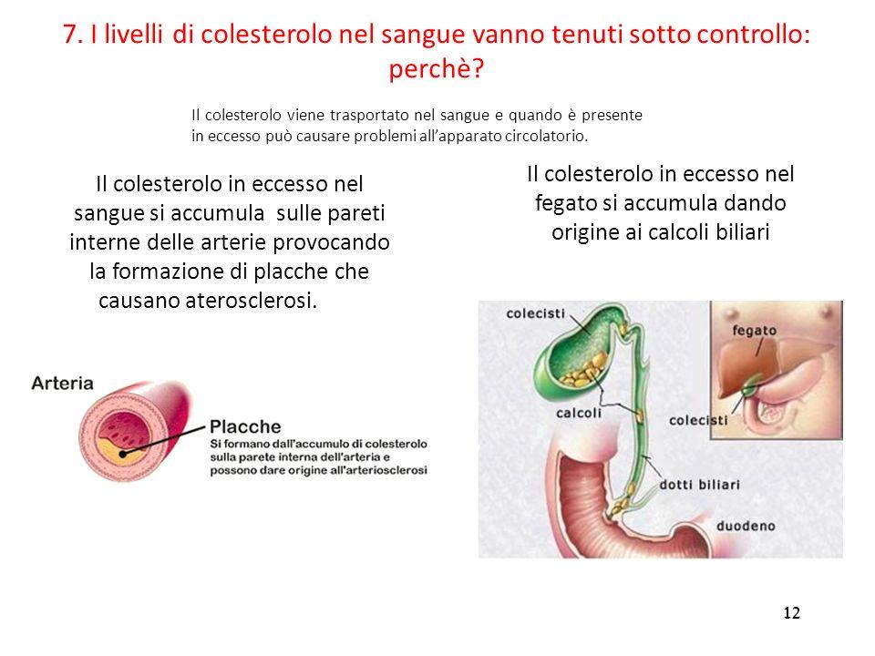 12 Il colesterolo in eccesso nel sangue si accumula sulle pareti interne delle arterie provocando la formazione di placche che causano aterosclerosi.