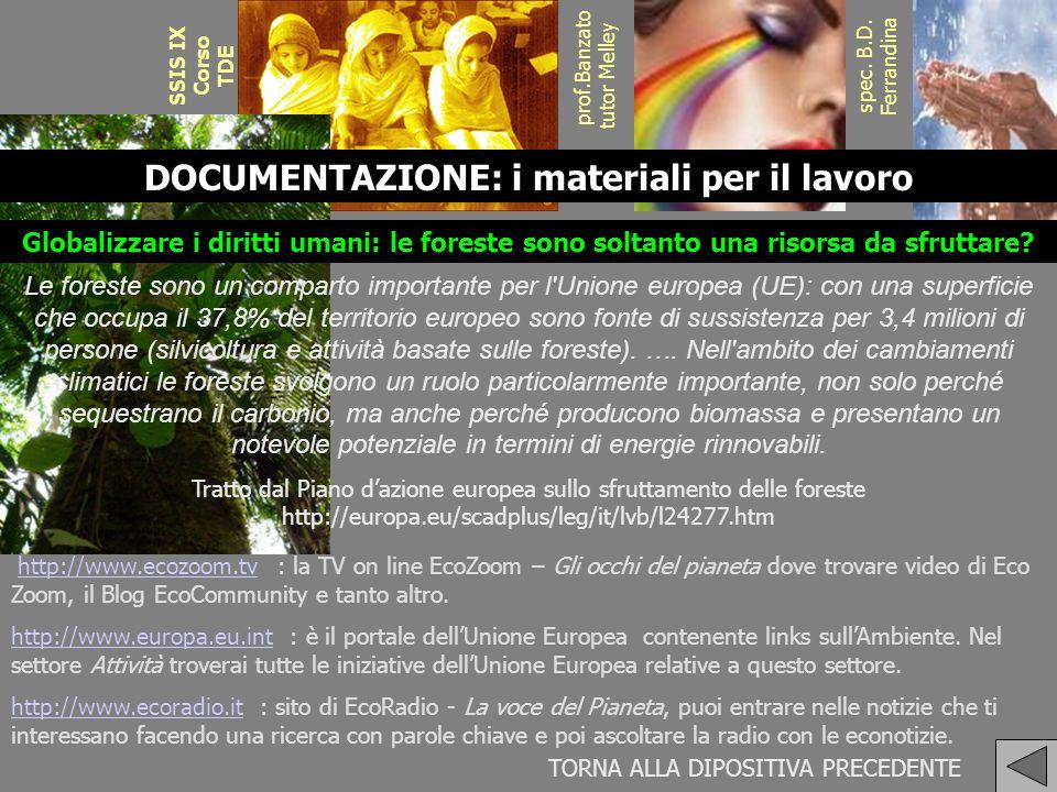 SSIS IX Corso TDE prof.Banzato tutor Melley spec. B.D. Ferrandina DOCUMENTAZIONE: i materiali per il lavoro Le foreste sono un comparto importante per