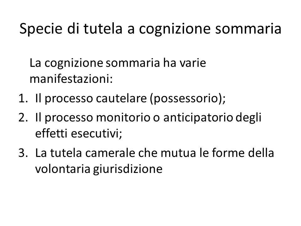 Specie di tutela a cognizione sommaria La cognizione sommaria ha varie manifestazioni: 1.Il processo cautelare (possessorio); 2.Il processo monitorio