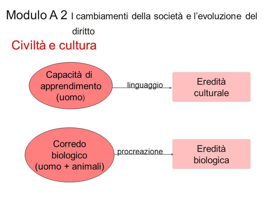 Civiltà e cultura Modulo A 2 I cambiamenti della società e levoluzione del diritto Capacità di apprendimento (uomo ) Corredo biologico (uomo + animali