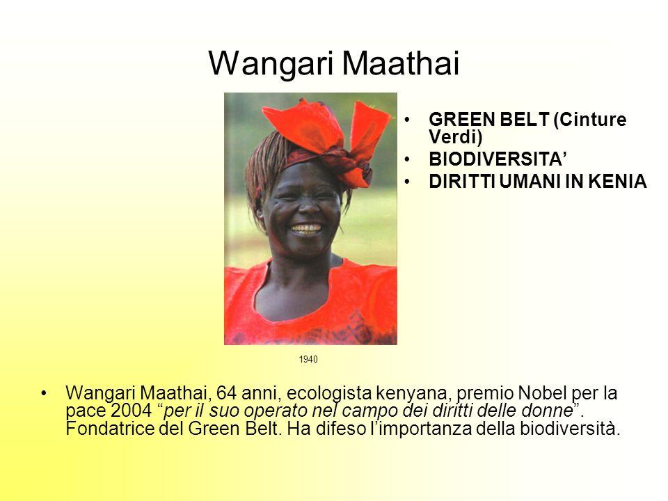 Wangari Maathai Wangari Maathai, 64 anni, ecologista kenyana, premio Nobel per la pace 2004 per il suo operato nel campo dei diritti delle donne.