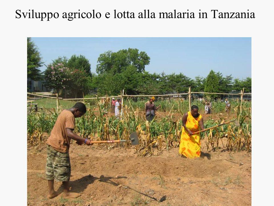 Sviluppo agricolo e lotta alla malaria in Tanzania