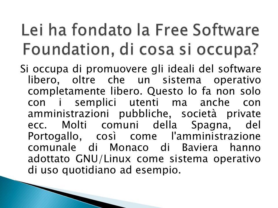 Si occupa di promuovere gli ideali del software libero, oltre che un sistema operativo completamente libero. Questo lo fa non solo con i semplici uten