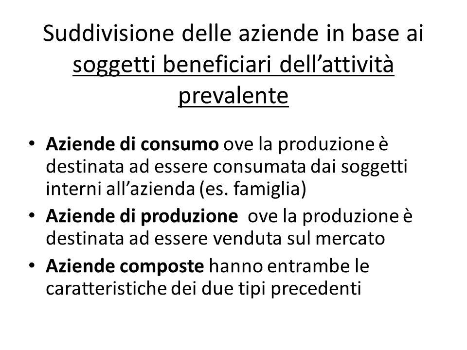Suddivisione delle aziende in base ai soggetti beneficiari dellattività prevalente Aziende di consumo ove la produzione è destinata ad essere consumata dai soggetti interni allazienda (es.