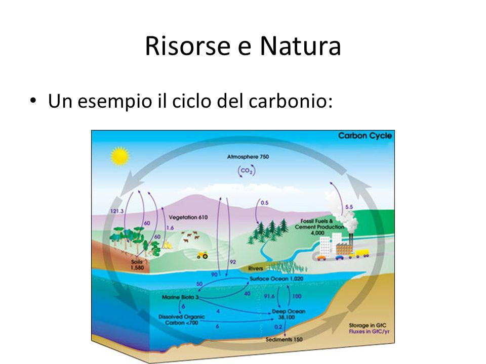 Risorse e Natura Un esempio il ciclo del carbonio: