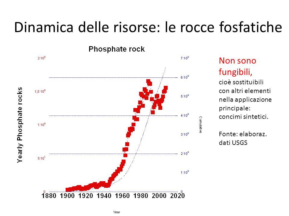 Dinamica delle risorse: le rocce fosfatiche Non sono fungibili, cioè sostituibili con altri elementi nella applicazione principale: concimi sintetici.