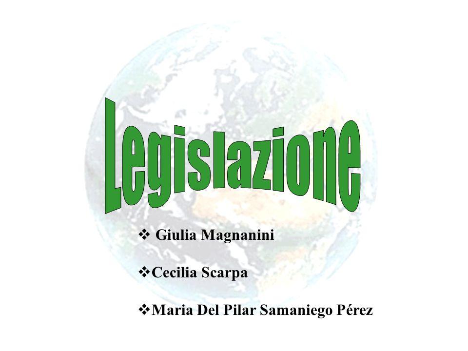 Giulia Magnanini Cecilia Scarpa Maria Del Pilar Samaniego Pérez