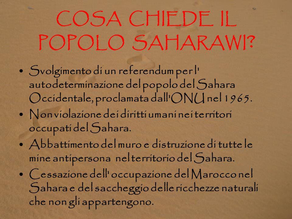 A FAVORE DEL POPOLO SAHARAWI: L'80% della popolazione spagnola è a favore della giusta causa dei saharawi. Dal 1991 il popolo saharawi mantiene la lot