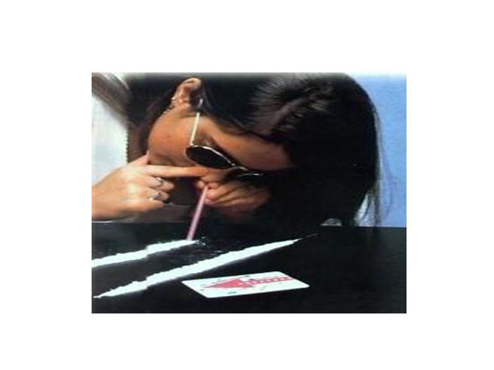 LEGALITÀ È …. … non essere complici dello spaccio di sostanze stupefacenti, che fa crescere la delinquenza