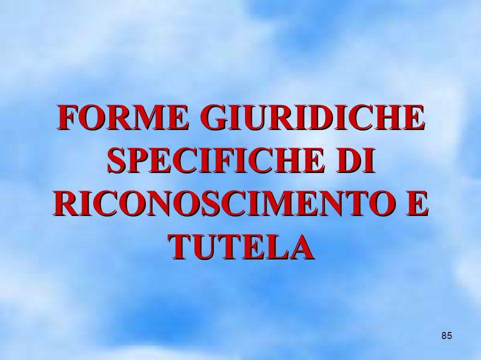 85 FORME GIURIDICHE SPECIFICHE DI RICONOSCIMENTO E TUTELA FORME GIURIDICHE SPECIFICHE DI RICONOSCIMENTO E TUTELA