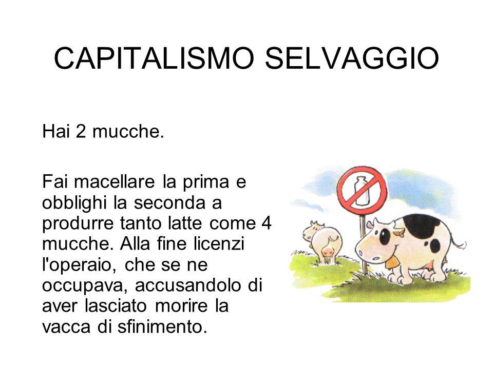 CAPITALISMO SELVAGGIO Hai 2 mucche.