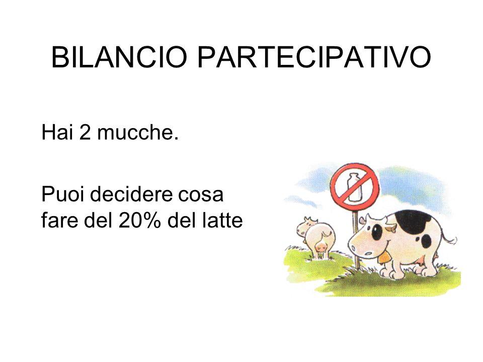BILANCIO PARTECIPATIVO Hai 2 mucche. Puoi decidere cosa fare del 20% del latte