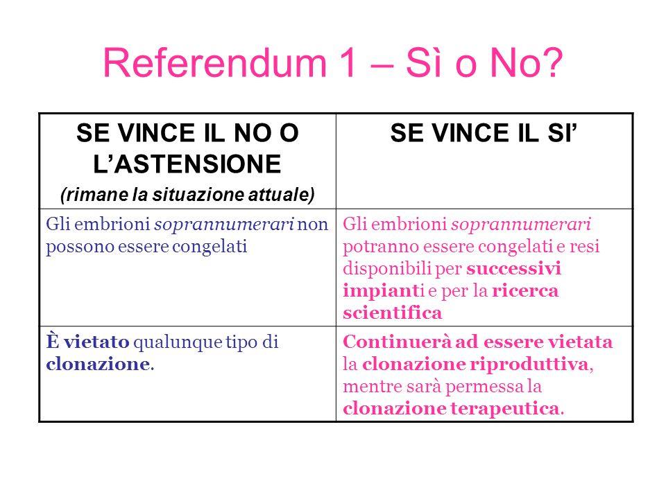 Referendum 1 Secondo il Comitato per il sì: –Le cellule staminali sono cellule che, debitamente orientate, sono capaci di moltiplicarsi, consentendo la cura di una serie di organi vitali.