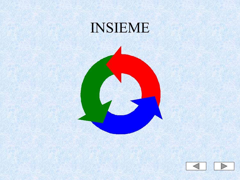 INSIEME